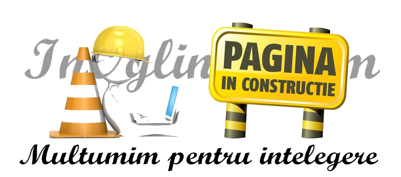 pagina-in-constructie_2